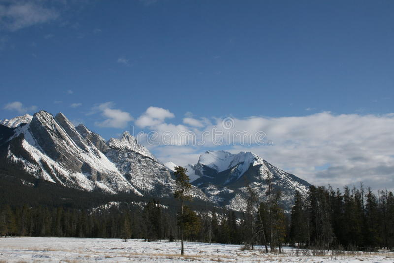 Felsige Berge, Kanada stockfotos