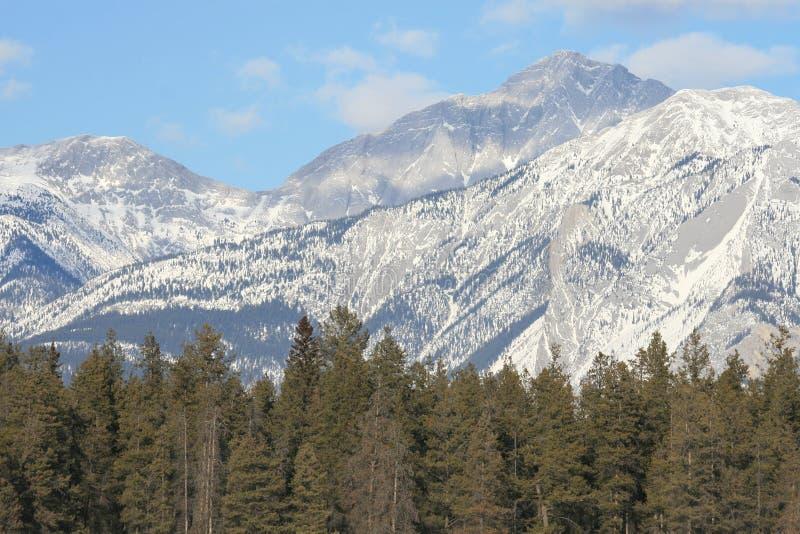 Felsige Berge, Kanada lizenzfreies stockfoto