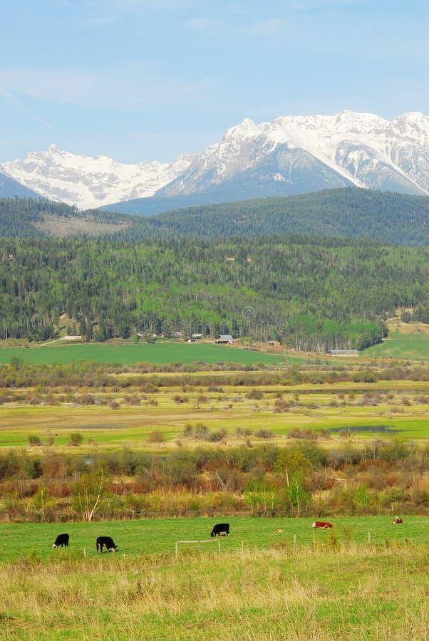 Felsige Berge und Bauernhöfe lizenzfreie stockbilder