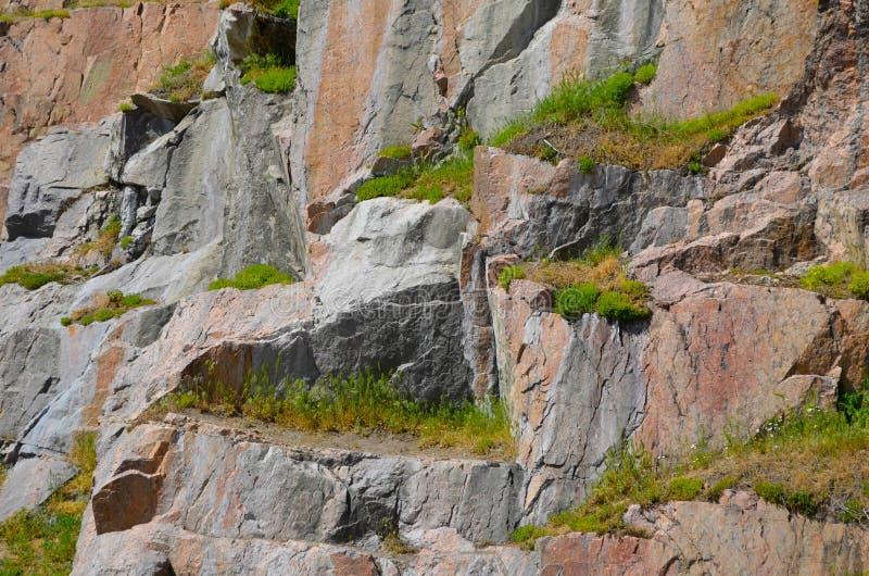 Felsige Granitwand bedeckt mit dem Grün stockfoto