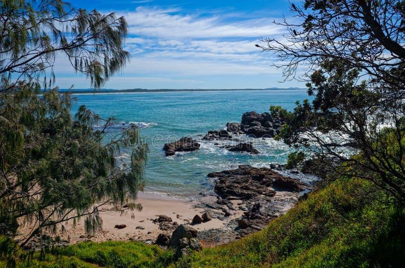 Felsige Küste auf Stadtstrand am Hafen Macquarie Australien stockbilder