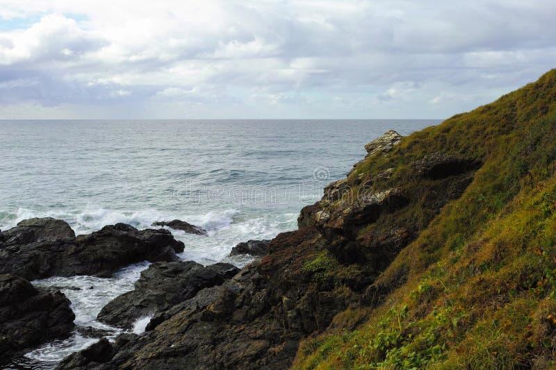Felsige Küste und grasartiger Hügel am Hafen Macquarie Australien lizenzfreies stockfoto