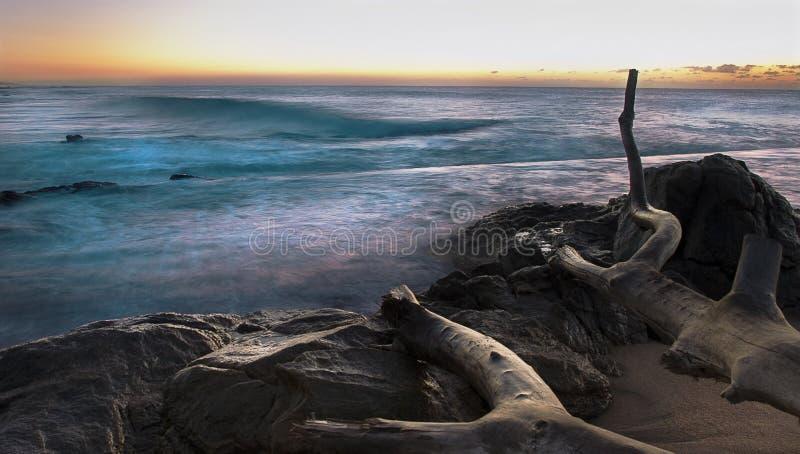 Felsiger Küste-Sonnenaufgang Mit Langer Berührung Lizenzfreies Stockfoto