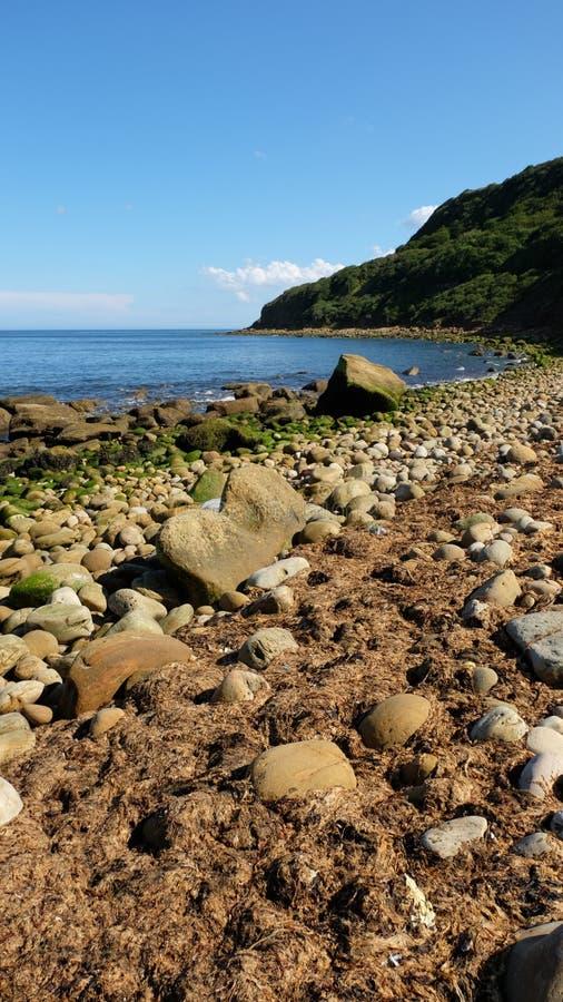 Felsiger Strand 1 lizenzfreies stockbild