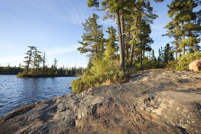 Felsiges Ufer mit Kiefern auf einem Boundary Waters See in Minneso stockbild
