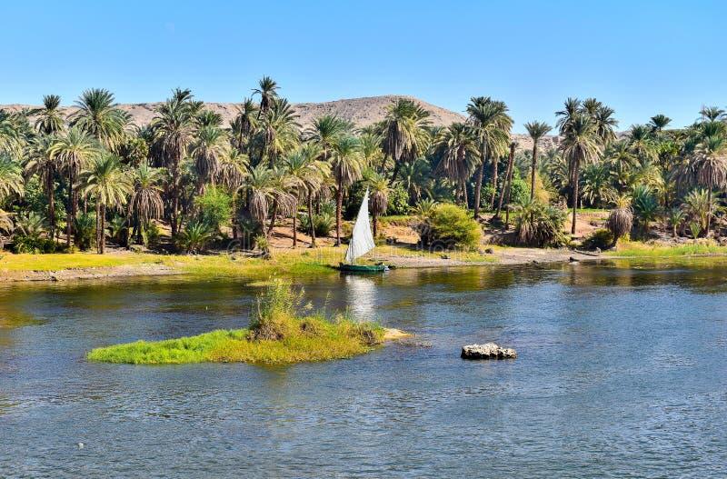 Felucca en Nile River en Egipto foto de archivo