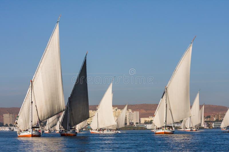 Felucca fartyg som seglar Nilen i Egypten. Afrika royaltyfria foton