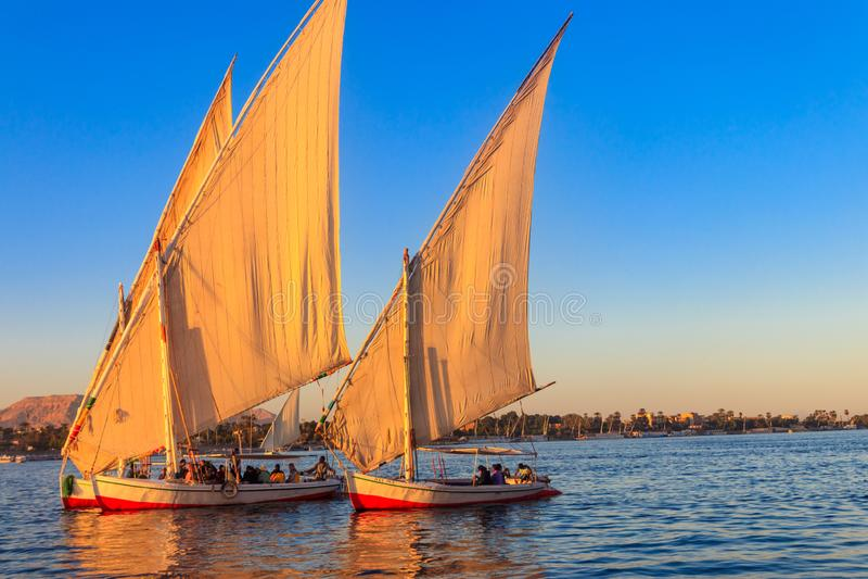 Felucca fartygsegling på Nilet River i Luxor, Egypten Traditionella egyptiska segelbåtar royaltyfri bild