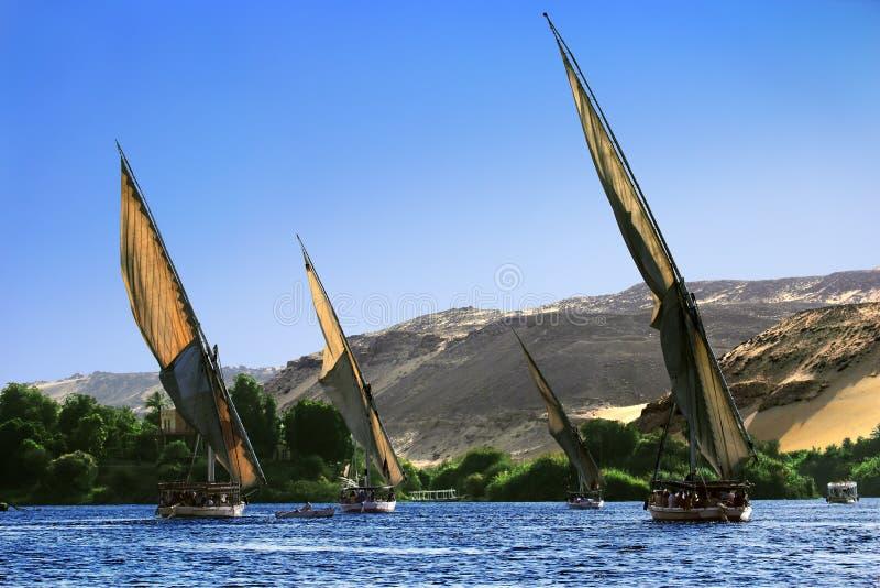 Felucca Nil Reiseflug stockbild