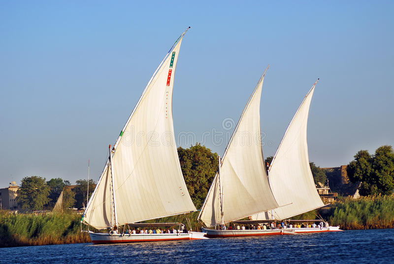 Felucca sails royalty free stock photos