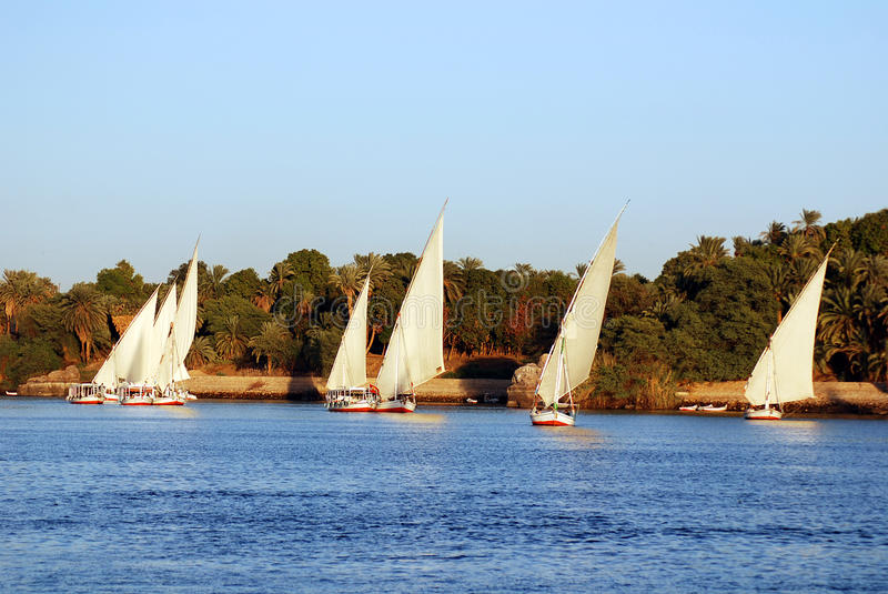 Felucca sails. ASWAN EGYPT NOV 25: Felucca sails on the Nile river near Aswan, Egypt on nov. 25 2010.The feluccas seen today were invented in 3350 BC stock photos