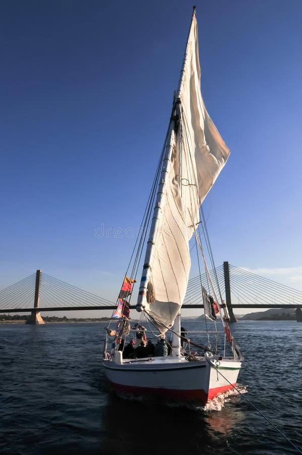 Felucca segling - Aswan bro, Egypten royaltyfri foto