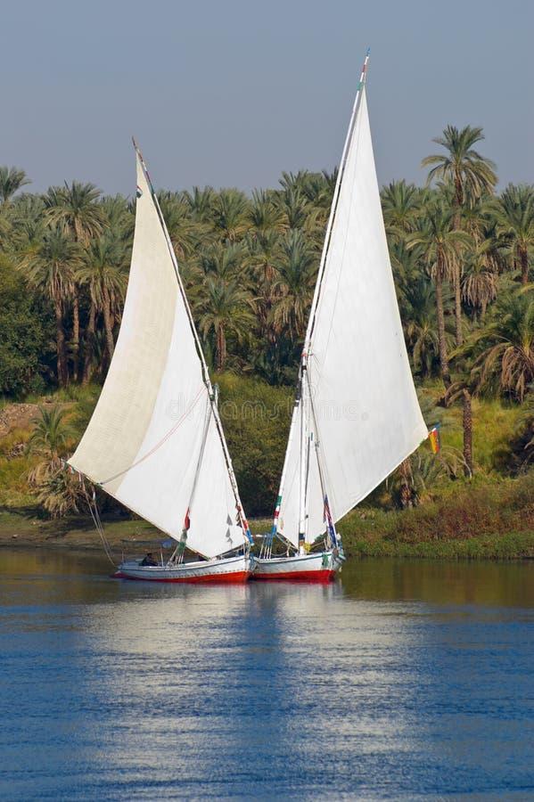 Feluccas sul fiume di Nilo nell'Egitto fotografie stock