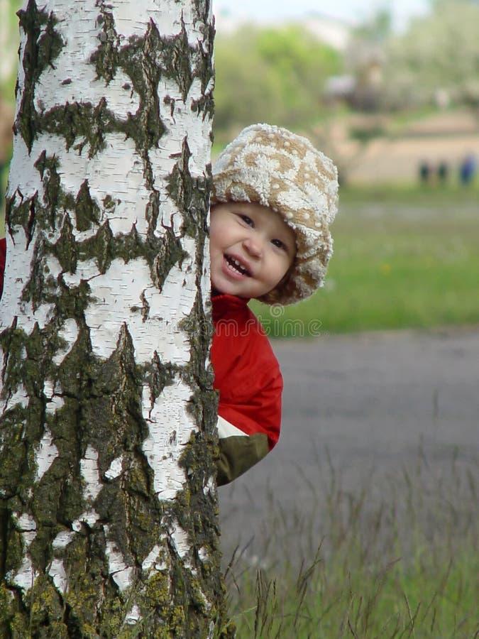 Fem-året flickan döljer efter björken och skrattar royaltyfri foto