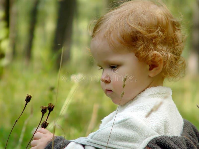 Fem-året flickan går för en gå i parkera som den är intresserad i t fotografering för bildbyråer