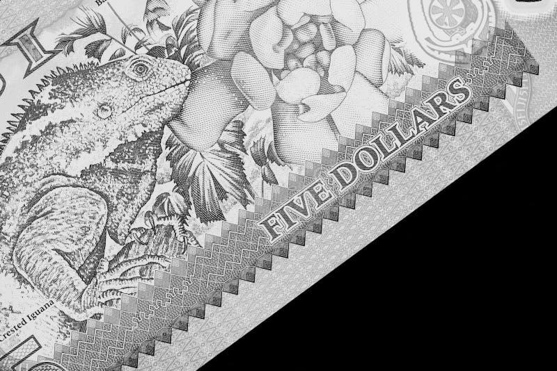 Fem Fijian dollar sedel på en svart bakgrund svart white arkivbilder