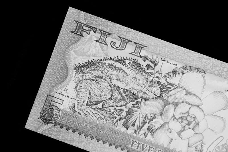 Fem Fijian dollar sedel på en svart bakgrund svart white royaltyfria bilder
