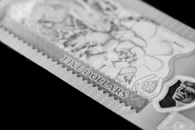 Fem Fijian dollar sedel på en svart bakgrund svart white royaltyfri foto