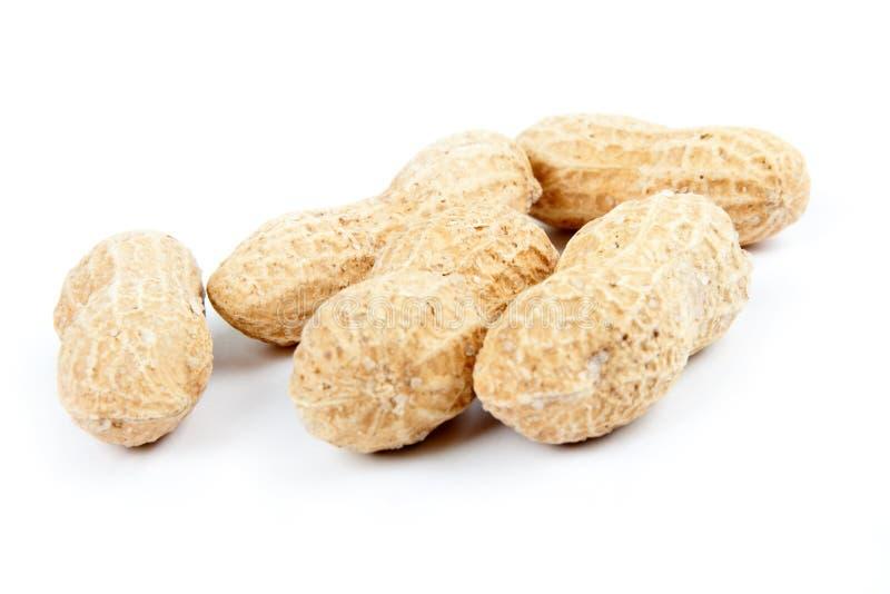 fem jordnötter royaltyfri bild