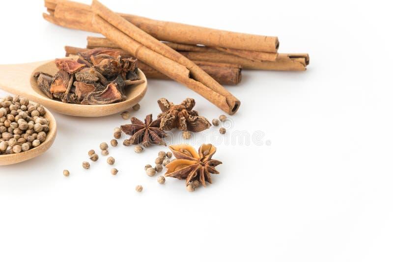 fem-krydda ingrediens royaltyfri foto