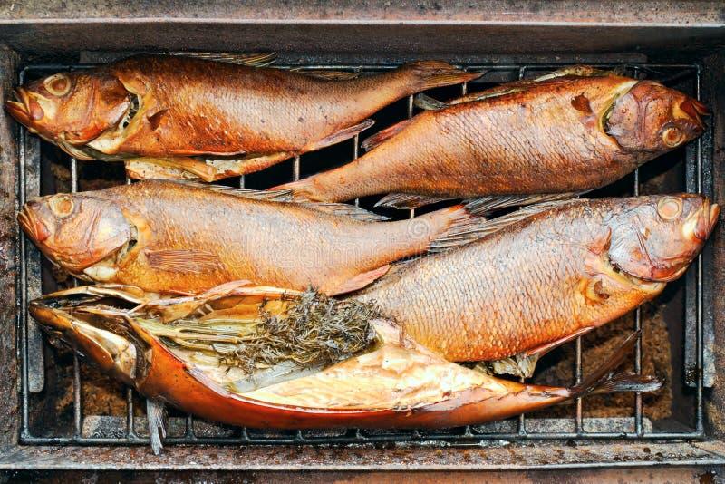 Fem rökte fiskar med kryddor fotografering för bildbyråer