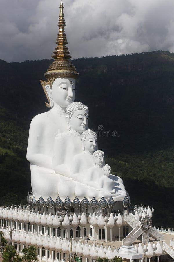 Fem vita buddha statyer som framme sitter väl justering av blå himmel och dekorerar den underbara attraktiva spegeln royaltyfri foto