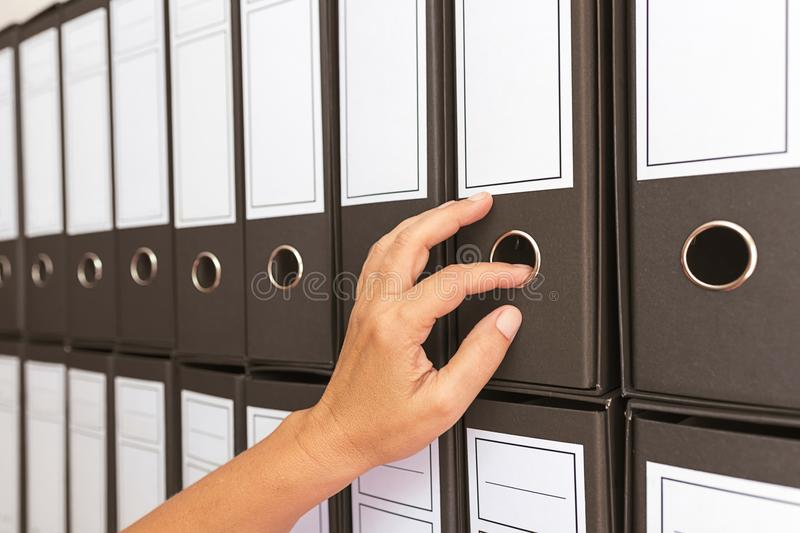 Female accountant archiving business documentation stock photo
