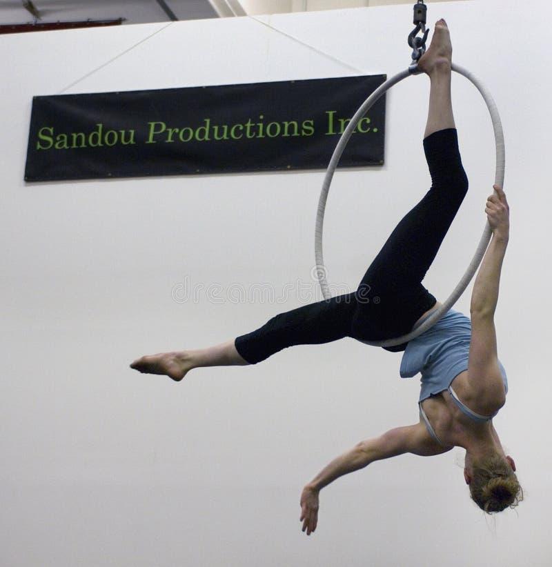 A female acrobat swings upside down from an aerial hoop. stock image
