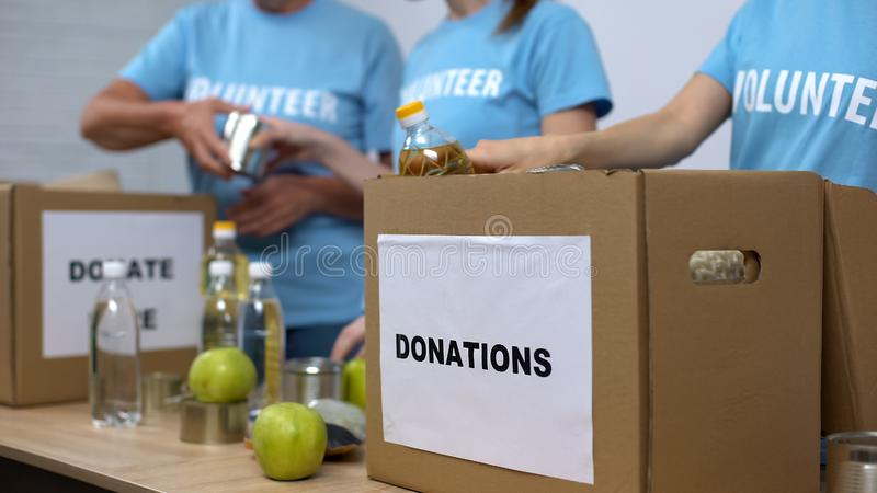 Female activists preparing provision boxes, putting food in cardboard containers royalty free stock images