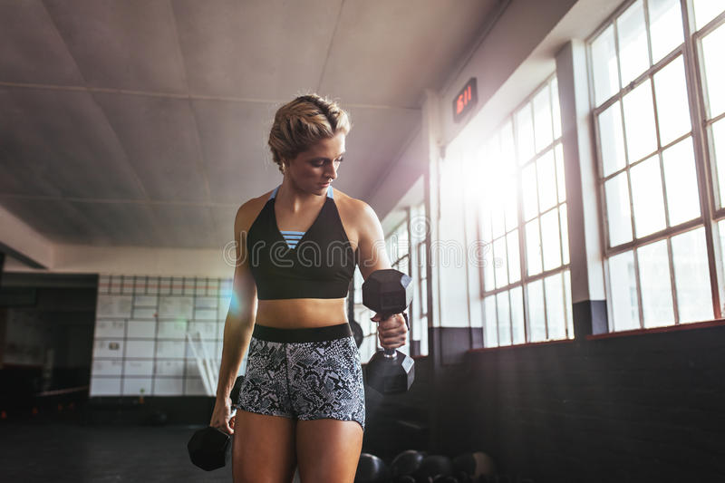 Female athlete working out at the gym using dumbbells. royalty free stock photos