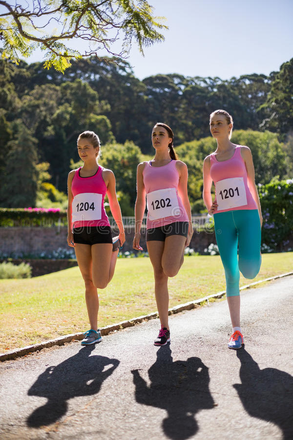 Female athletes warming up in park stock photography