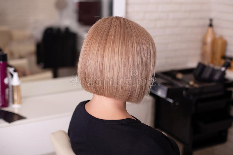7 006 Back Short Hair Photos Free Royalty Free Stock Photos From Dreamstime