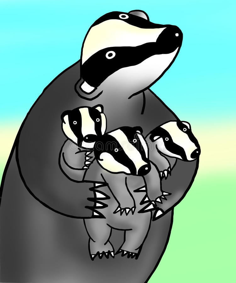 Badger illustration royalty free stock photos