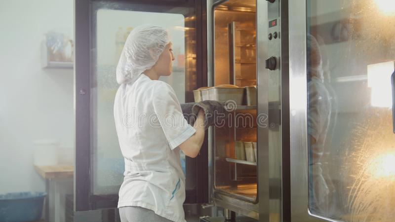 Female bakes on commercial kitchen - woman puts baking in the oven royalty free stock image