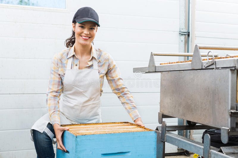 Female Beekeeper With Honeycomb Box At Factory. Portrait of beautiful young female beekeeper with honeycomb box at factory royalty free stock photo