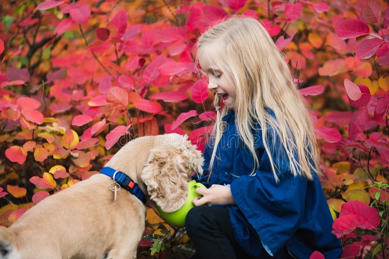Happy small girl with cocker spaniel outdoors stock photography