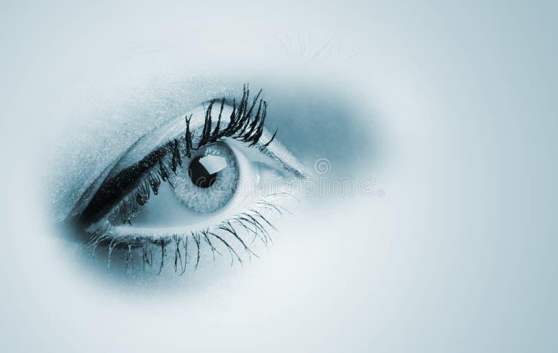 Female blue eyes. A photo close up, a part face stock photos