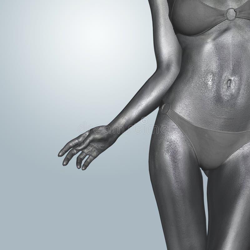 Female body stock photos