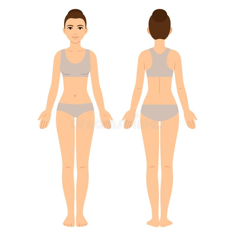 Female body front and back stock illustration