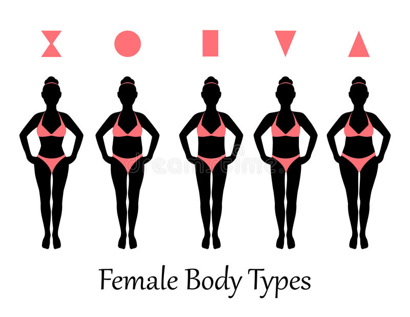 Female body types. Silhouettes of various types of female figures stock illustration