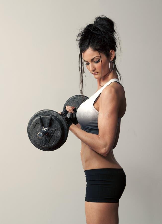 Female Bodybuilder royalty free stock image
