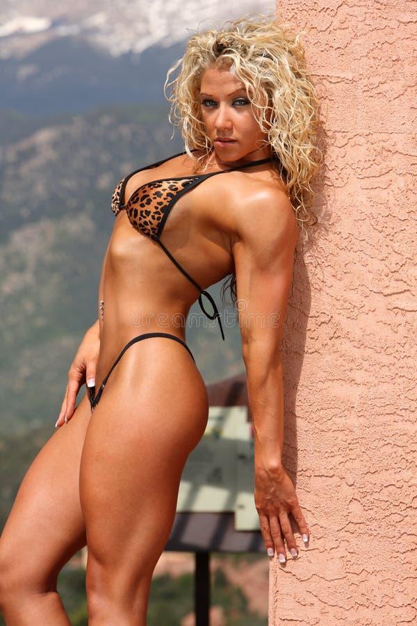 Female bodybuilder royalty free stock photos