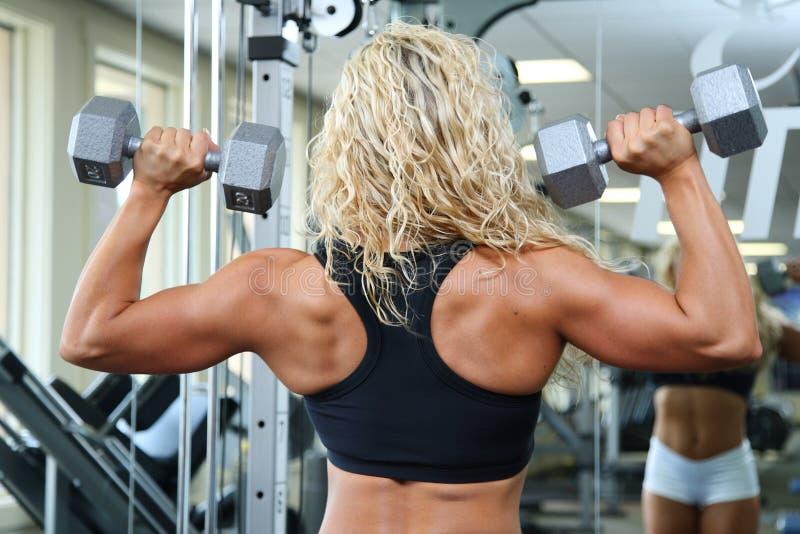 Female bodybuilder stock photography