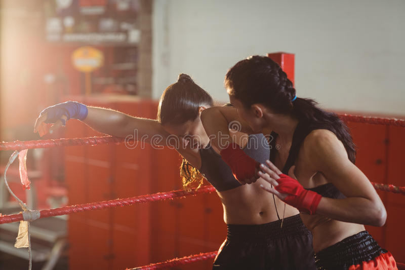 Female boxers fighting in boxing ring stock photography