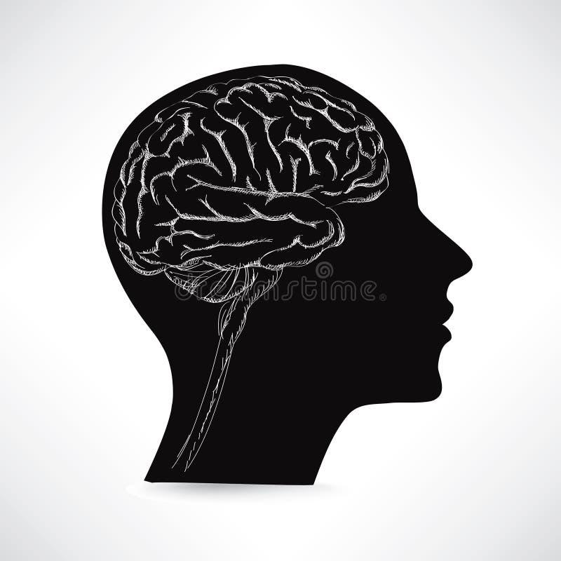 Female brain. Thinker concept. Vector sketch illustration. stock illustration