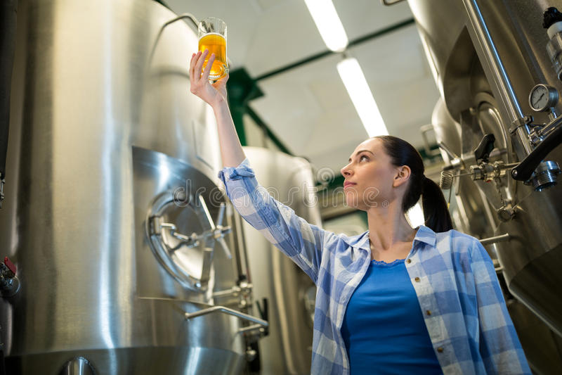 Female brewer testing beer. Attentive female brewer testing beer at brewery stock photos