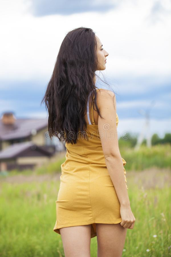 Female brunette hair, rear view, summer park stock photography