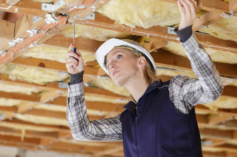 Female builder screwing joining plate on wooden beam stock photography