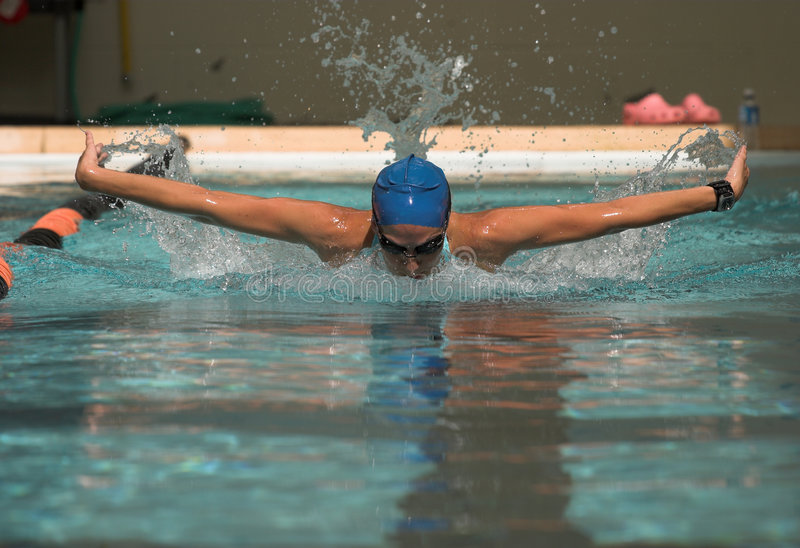 Female butterfly stroke royalty free stock image