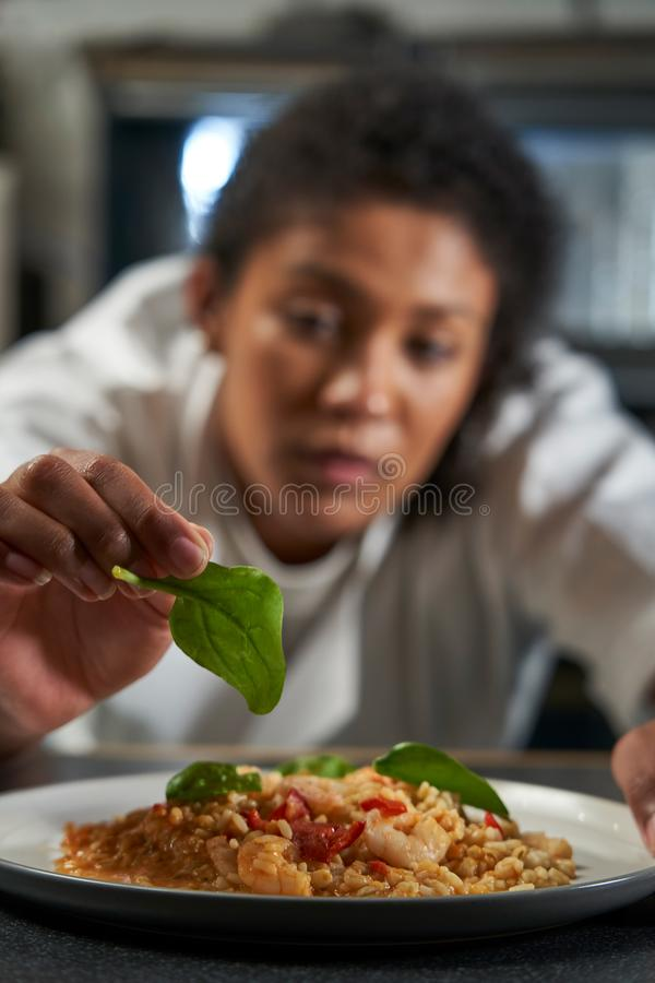 Female Chef Garnishing Plate Of Food In Professional Kitchen royalty free stock photography
